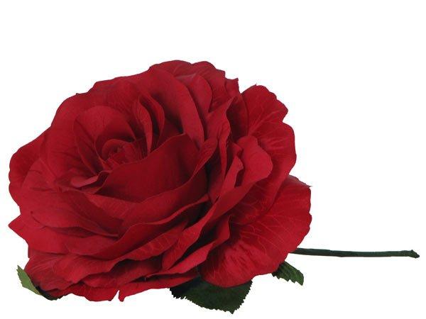 Haarblume Rose Rot